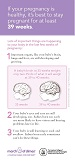 Late Preterm Brain Development Flyer