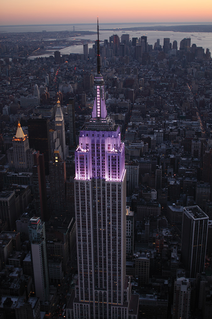 Empire State Building Lights Purple For 2013 World