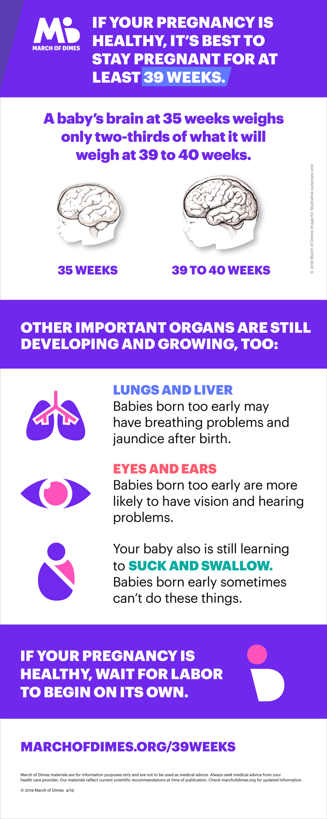 Pregnancy week by week | March of Dimes