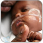 thumbnail image for Prematurity Collaborative
